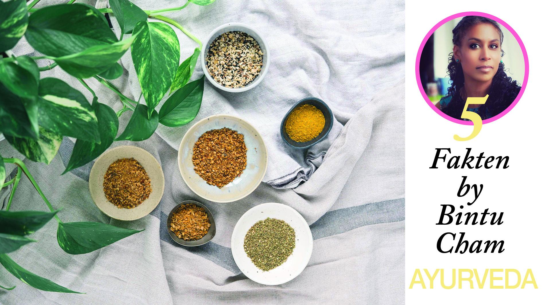 Ayurveda –5 Fakten by Bintu Cham